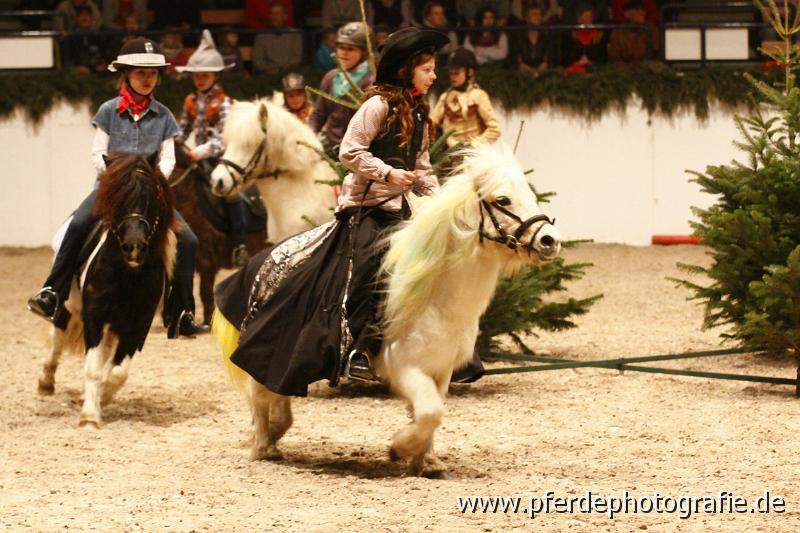 pferde gezüchtet von olaf ud kirsten rörden